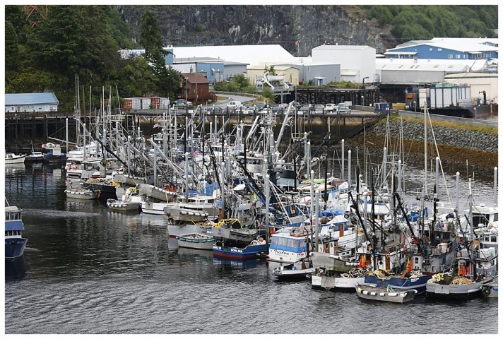 Fishing boats wait in the marina.