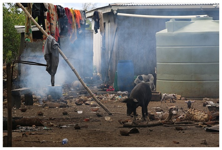 A house yard; water collector, pigs and smoked laundry :-)