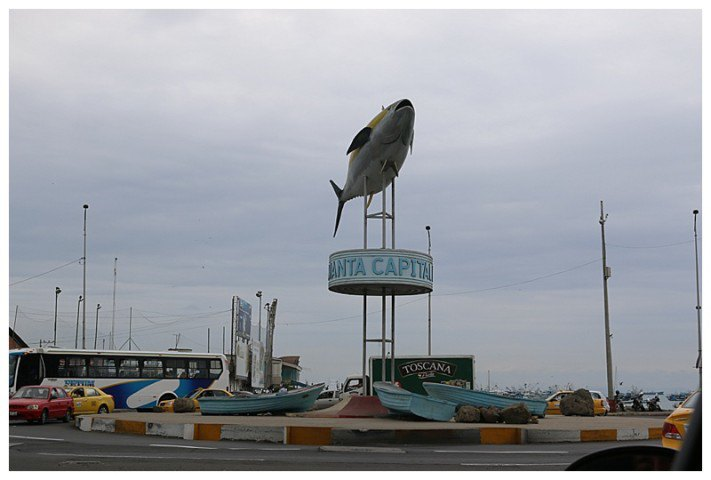 Tuna even gets a staue on a roundabout!