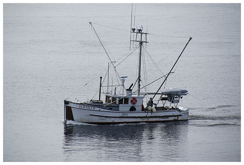 A passing fishing boat, this one trolls with long-lines; baited hooks and 'flashers' to attract the fish.